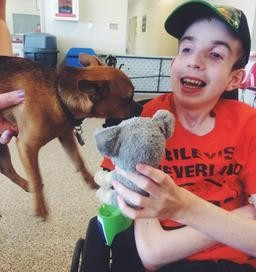A small dog and a special kid meet at Camp Discovery on July 30th, 2014