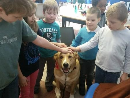 Cooper the Medium Yellow Rescue Dog Enjoys Being Pet by Children During a Visit at EduCare Montessori